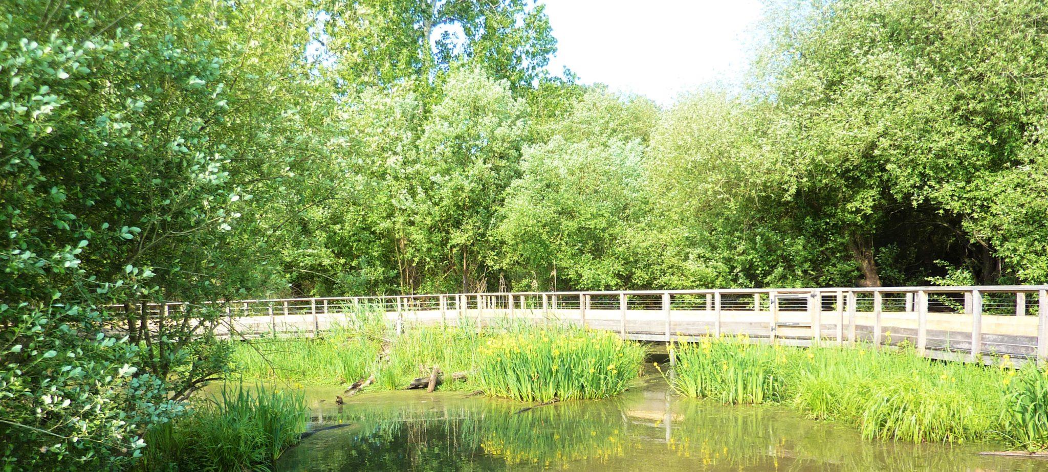 La Réserve Naturelle du Marais d'Orx Labenne