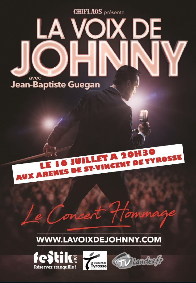 La voix de Johnny