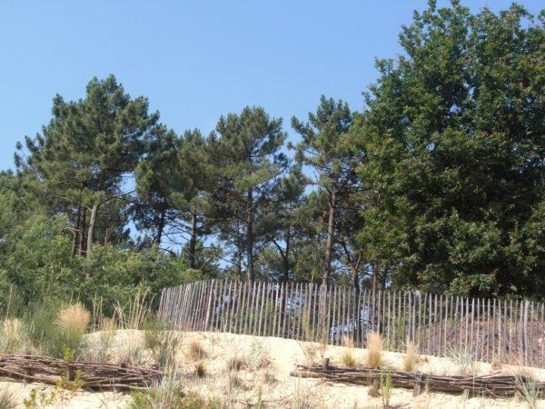 Parcours d'orientation «Le Cydel»