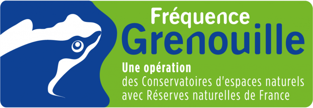 logo-frequence-grenouille-0-0